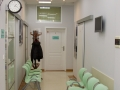 klinika 5